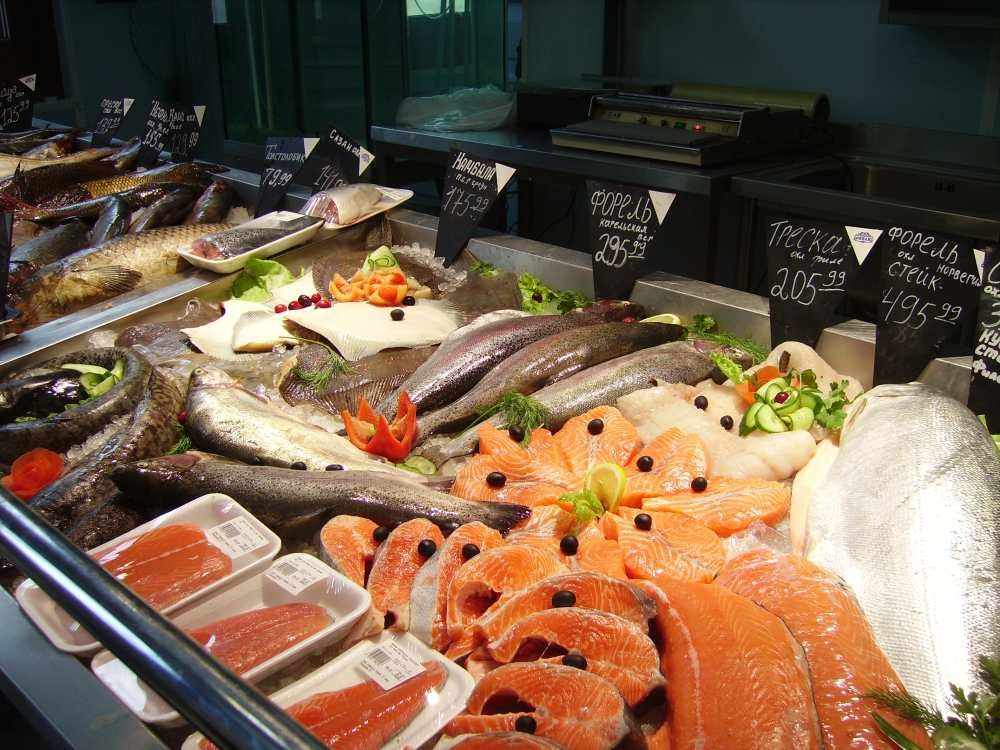магазин к рыбалки санкт-петербург васильевский остров